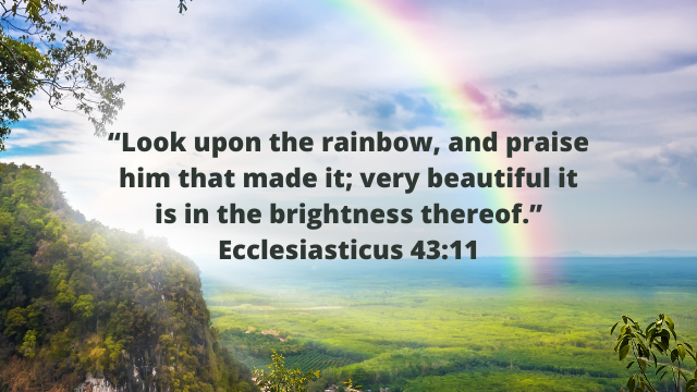 Look upon the rainbow…